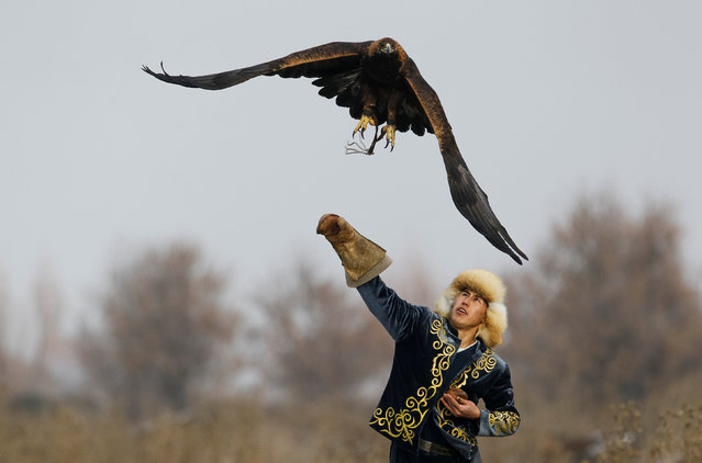 Akberen Kurmangaliyev, a hunter with a golden eagle, releases his tamed bird during training outside of the village of Shamalgan, in Almaty region, Kazakhstan, December 14, 2016. (Photo by Shamil Zhumatov/Reuters)