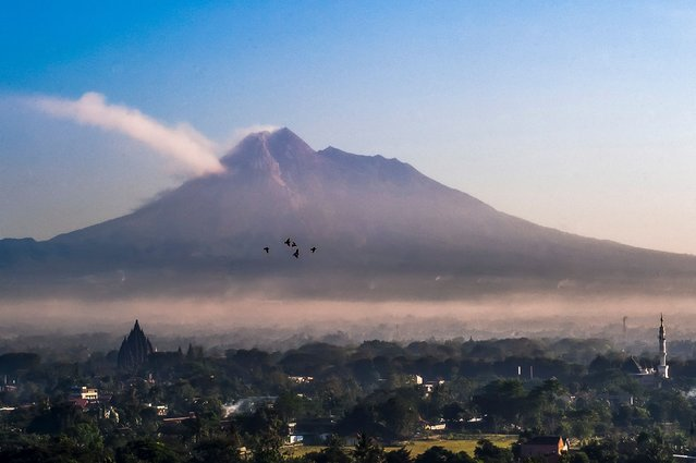 A flock of birds fly in the foreground as Mount Merapi, Indonesia's most active volcano, is seen from Sleman, Yogyakarta, on July 7, 2021. (Photo by Agung Supriyanto/AFP Photo)
