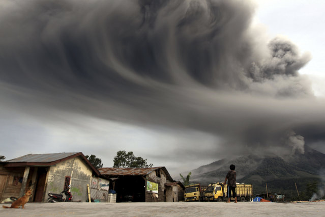 A woman looks on as Mount Sinabung spews ash, as pictured from Sibintun village in Karo district, November 18, 2013. (Photo by Roni Bintang/Reuters)