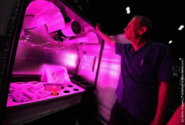 HempCon 2011 Medical Marijuana Expo, hydroponic grow cabinet