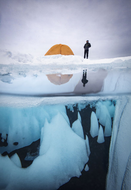 Underwater view of Greenland icecap. (Photo by Paul Zizka/Caters News Agency)