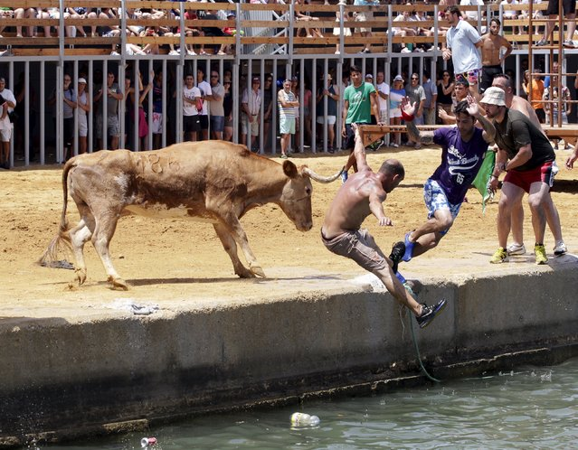 """A bull chases revellers who jump into the sea during the """"Bous a la Mar"""" festival in the eastern Spanish coastal town of Denia, Spain, July 6, 2015. (Photo by Heino Kalis/Reuters)"""