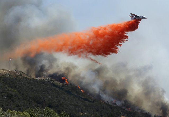 A water bomber makes a drop on flames burning on a hillside as the Cocos Fire continues in San Marcos, California May 15, 2014. Wildfires were raging in southern California on Thursday, keeping thousands of residents and students away from their homes after San Diego county officials maintained evacuation advisories. (Photo by Mike Blake/Reuters)