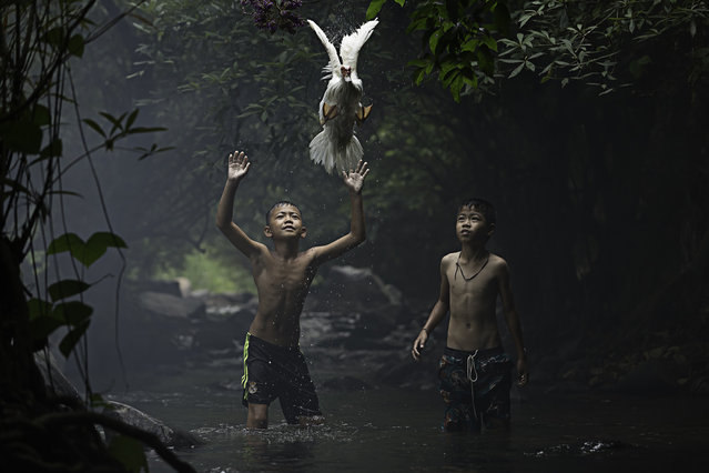 Merit: Catching a Duck. Two boys are trying to catch a duck at the stream of the waterfall. Nong Khai Province, Thailand. (Photo and caption by Sarah Wouters/National Geographic Traveler Photo Contest)