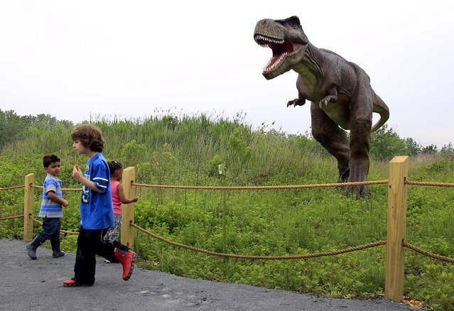 Children watch and react as a T-Rex moves and growls in an inter-active display at Field Station Dinosaurs in Secaucus, N.J on May 25, 2012