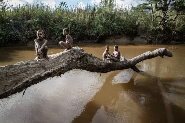 Boys from the Dani tribe sit on a fallen tree over a river at Soroba Village on August 9, 2014 in Wamena, Papua, Indonesia. Photo by Agung Parameswara/Getty Images)