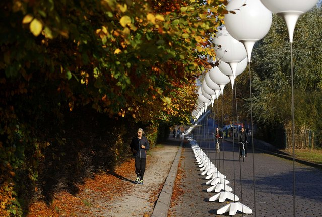 """A woman jogs along stands with balloons placed along the former Berlin Wall location at Mauerpark, which will be used in the installation """"Lichtgrenze"""" (Border of Light) in Berlin November 7, 2014. (Photo by Pawel Kopczynski/Reuters)"""