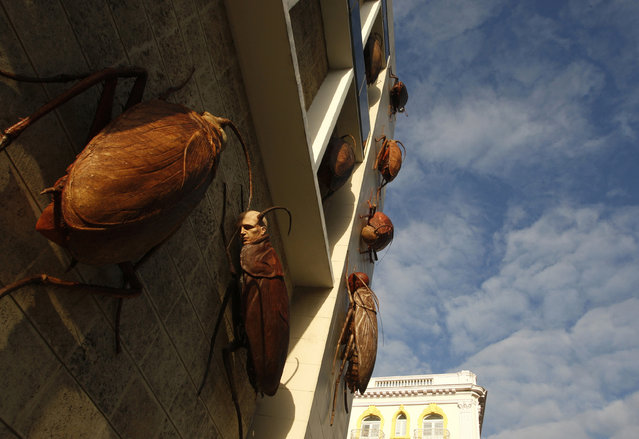 Sculptures of cockroaches with human faces appear to climb up the facade of the Museo de Bellas Artes during an exhibition in Havana, March 27, 2009. (Photo by Claudia Daut/Reuters)
