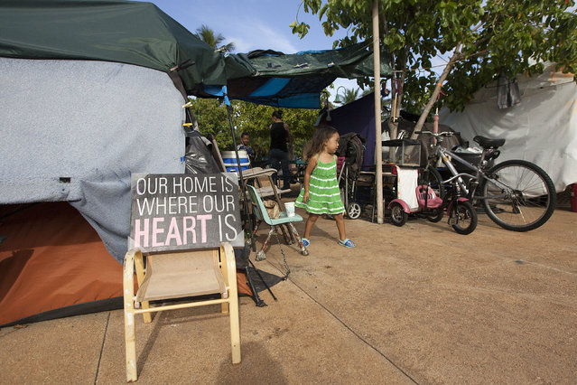 In this August 14, 2015 photo, Thalia Martin, 4, walks outside her tent in the Kakaaako neighborhood of Honolulu. Martin, who lives on the streets with her parents Tabatha and Tracy, had to move from this location when the city cleared the large homeless camp. (Photo by Jae C. Hong/AP Photo)
