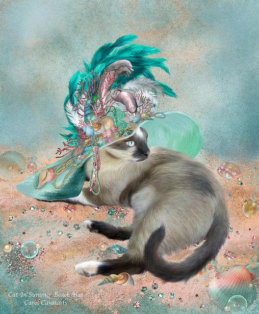 Cats In Fancy Hats Art By Carol Cavalaris