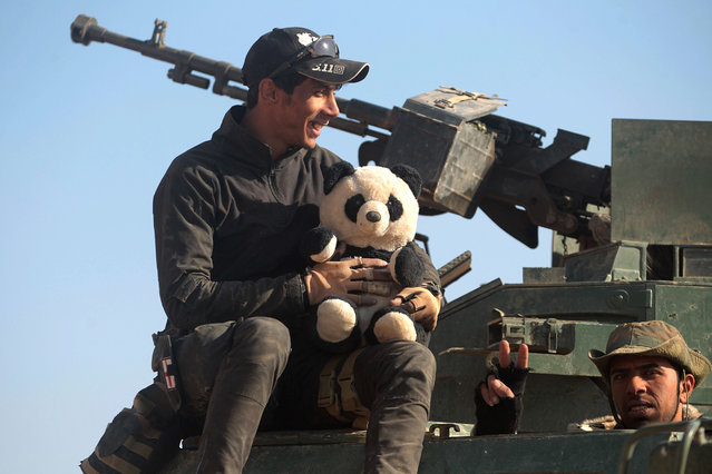 An Iraqi Shiite fighter from the Hashed al-Shaabi (Popular Mobilisation) paramilitaries holds a stuffed panda bear as they deploy in a desert area near the village of Tall Abtah, southwest of Mosul, on November 28, 2016 during a broad offencive by Iraq forces to retake Mosul from jihadists of the Islamic State group. (Photo by Ahmad Al-Rubaye/AFP Photo)