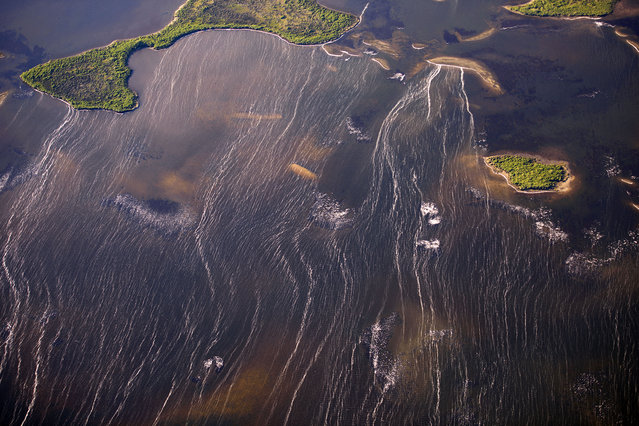 There are numerous very picturesque islands in Northwestern Florida. (Photo by Jassen Todorov/Caters News)