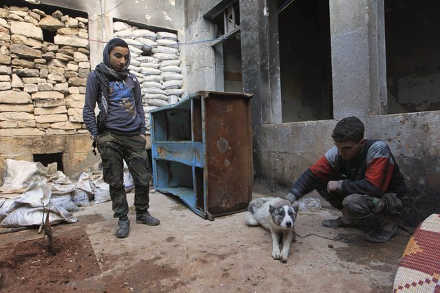 A rebel fighter pets a dog as a fellow fighter watches near the frontline against forces loyal to Syria's President Bashar al-Assad in Aleppo January 8, 2015. (Photo by Jalal Al-Mamo/Reuters)