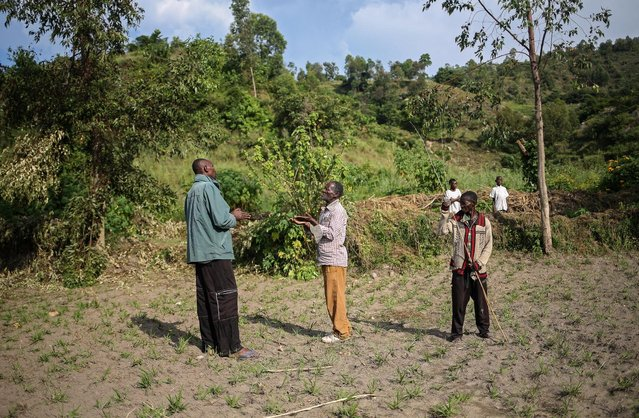 A Bahavu landlord (L) and Pygmy workers have an argument about wages, on Idjwi island in the Democratic Republic of Congo, November 24, 2016. (Photo by Therese Di Campo/Reuters)