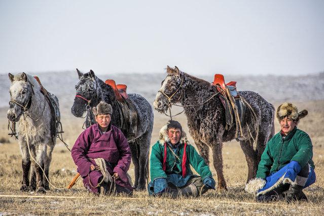 Mongolian Horsemen with their horses. (Photo by Batzaya Choijiljav/Caters News)