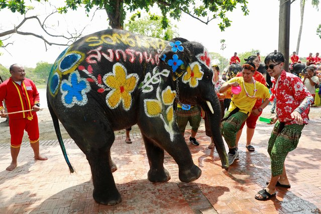 An elephant calf dances with people as part of celebrations for the water festival of Songkran in Ayutthaya, Thailand on April 11, 2019. (Photo by Soe Zeya Tun/Reuters)