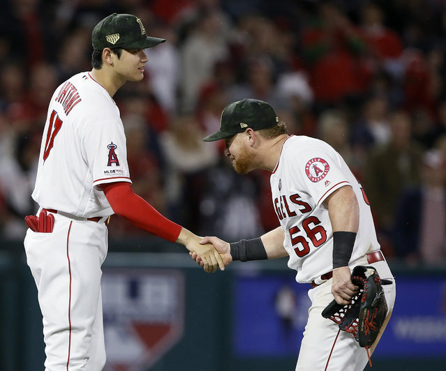 Los Angeles Angels designated hitter Shohei Ohtani, left, and right fielder Kole Calhoun celebrate after the Angels defeated the Kansas City Royals 6-3 in a baseball game in Anaheim, Calif., Saturday, May 18, 2019. (Photo by Alex Gallardo/AP Photo)
