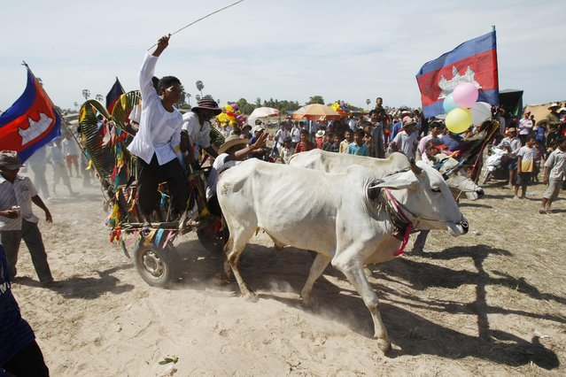 Local youths ride a cart pulled by oxen as they take part in a ceremony to exorcize evil spirits and pray for rain amid the rice planting season at Pring Ka-ek village, northwest of Phnom Penh, Cambodia, Friday, May 22, 2015. Cambodia is a country which heavily relies on agriculture as over 80 percent of its 14 million people are farmers, growing rice as their main crop. (Photo by Heng Sinith/AP Photo)