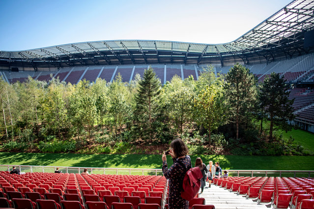 """People look at the """"For Forest – The Unending Attraction of Nature"""" art installation during a press preview at the Woerthersee Stadium, in Klagenfurt am Woerthersee, Austria, 05 September 2019. The installation by Swiss artist and art mediator Klaus Littmann was inspired by a pencil drawing of Austrian artist Max Peintner. It consists of 300 trees and will be open for public on the pitch from 08 September to 27 October 2019. (Photo by  Christian Bruna/EPA/EFE)"""
