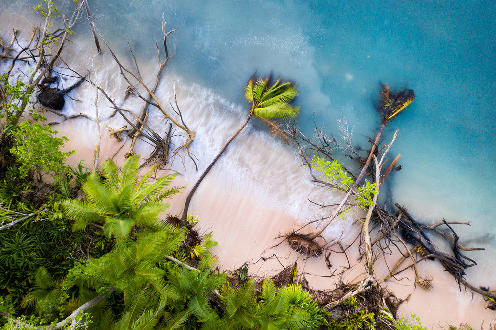 CIWEM Environmental Photographer of the Year 2019
