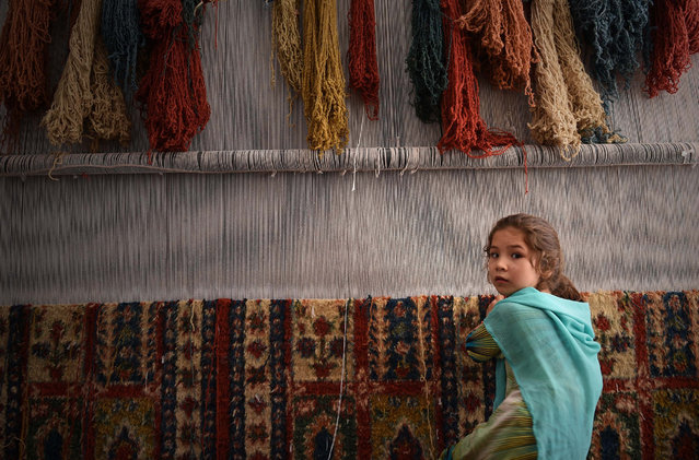 An Afghan refugee girl makes a carpet at a small factory in Peshawar on June 20, 2016. World Refugee Day is marked each year on June 20. Hundreds of thousands of people fled Afghanistan during the last three decades of war, with a majority of them taking refuge in neighbouring Pakistan. (Photo by A. Majeed/AFP Photo)