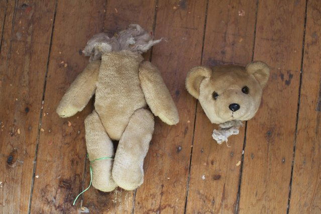 "A teddy bear in two pieces is pictured on the workshop floor at Sydney's Doll Hospital, August 19, 2014. Opened in 1913, Sydney's Doll Hospital has worked on millions of dolls, teddy bears and other toys. Behind a toy shop on a busy suburban street in Sydney's south, ""doll surgeons"" transplant fingers, toes and heads, and repair broken eye sockets in dolls who were the victim of a childhood tantrum or sibling rivalry, sometimes decades ago. (Photo by Jason Reed/Reuters)"