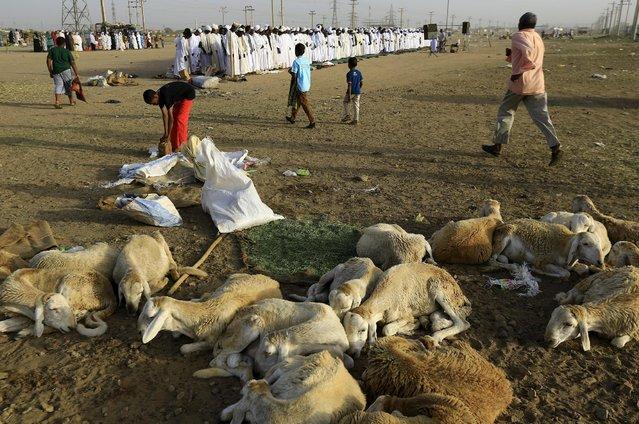 Muslims gather to perform Eid al-Adha prayers in Khartoum, Sudan September 24, 2015. (Photo by Mohamed Nureldin Abdallah/Reuters)