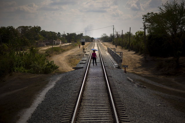 In this March 23, 2015 photo, a woman who just got off the train uses the tracks to cross a bridge after arriving to her destination in the province of Holguin, Cuba. Cuba became the first Latin American country with a train system in the mid-19th century, with the network growing to 5,600 miles of rails crisscrossing the island before the system fell into disrepair. Currently, a longstanding U.S. trade embargo makes it hard to get parts. (Photo by Ramon Espinosa/AP Photo)
