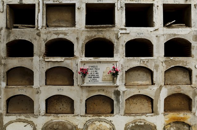 A grave is pictured among empty graves during All Saints Day at the cemetery of San Fernando in the Andalusian capital of Seville, November 1, 2015. (Photo by Marcelo del Pozo/Reuters)