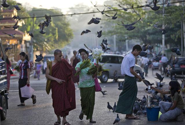 A flower vendor offers flowers to a Buddhist monk walks toward Shwedagon Pagoda in Yangon, Myanmar, Saturday, November 7, 2015. (Photo by Gemunu Amarasinghe/AP Photo)
