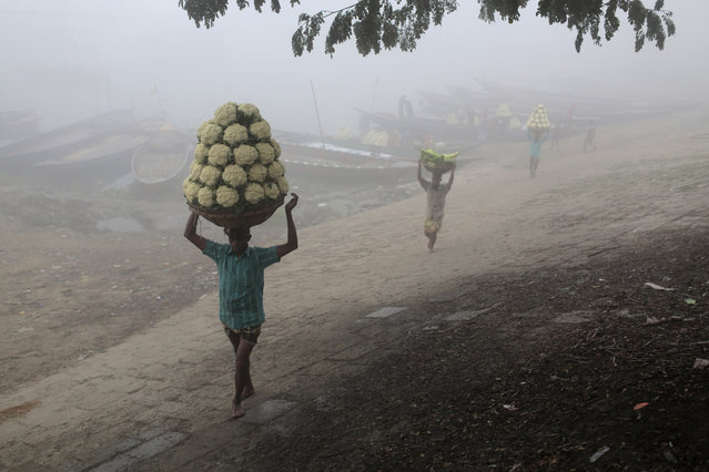 Bangladeshi workers unload vegetables from a boat on a cold and foggy winter morning on the banks of the River Turag, near Dhaka, Bangladesh, Wednesday, January 21, 2015. (Photo by A. M. Ahad/AP Photo)
