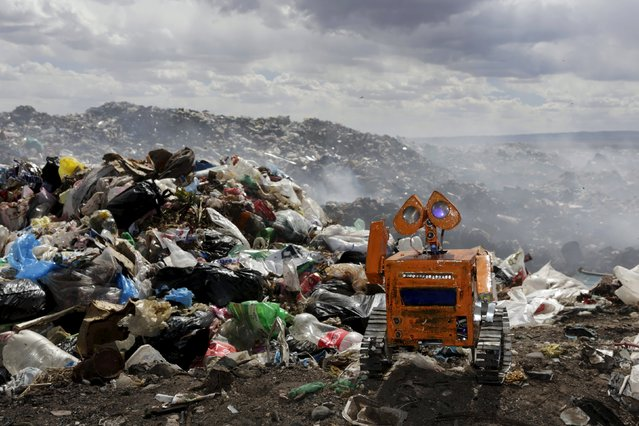 A replica of Wall-E character built by a Bolivian student Esteban Quispe, 17, is seen near a rubbish dump in Patacamaya, south of La Paz, December 10, 2015. (Photo by David Mercado/Reuters)