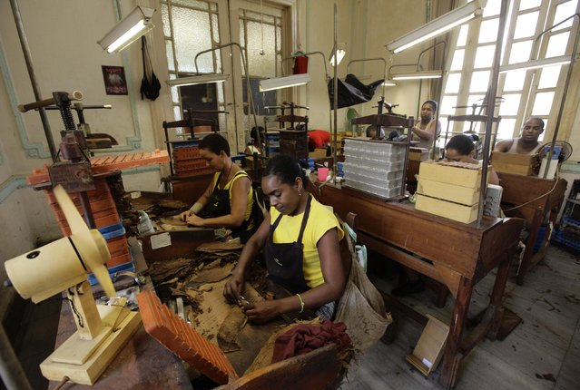 """Workers roll cigars at the Cohiba cigar factory """"El Laguito"""" in Havana September 10, 2012. (Photo by Desmond Boylan/Reuters)"""