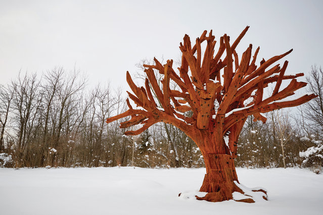 This undated photo released by the Frederik Meijer Gardens & Sculpture Park, shows the sculpture Iron Tree by Ai Weiwei in Grand Rapids, Mich. The large iron sculpture that's designed to prompt thoughts about how different people and cultures come together has been acquired by Frederik Meijer Gardens & Sculpture Park in western Michigan, the organization announced Wednesday, February 11, 2015. (Photo by Dean Van Dis/AP Photo/Frederik Meijer Gardens & Sculpture Park)