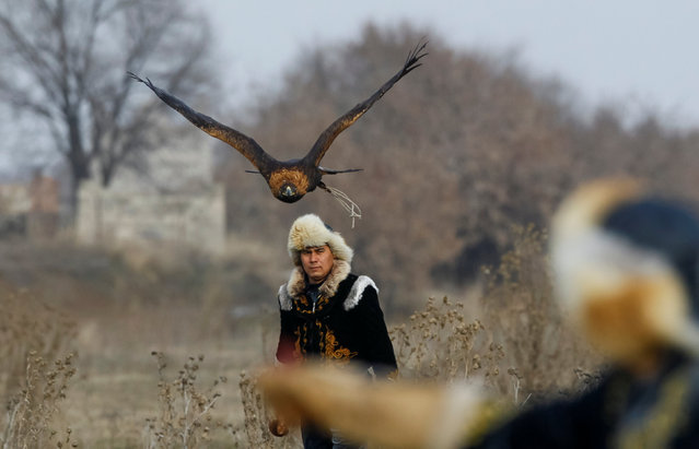 Arman Kushkarov, a hunter with a golden eagle, looks on after he released his tamed bird during training outside of the village of Shamalgan, in Almaty region, Kazakhstan, December 14, 2016. (Photo by Shamil Zhumatov/Reuters)