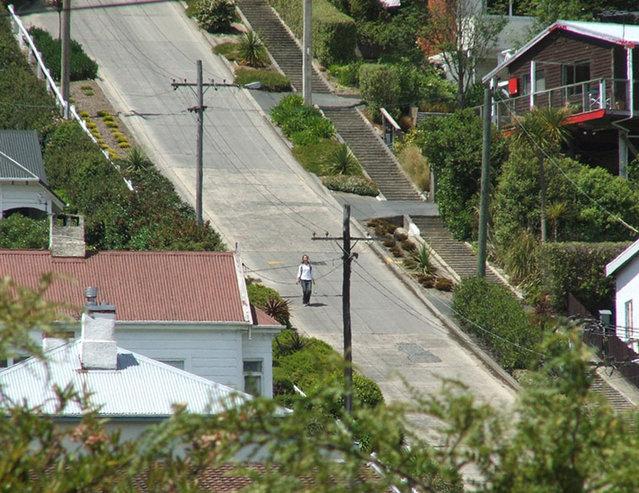 Baldwin Street - The World's Steepest Street