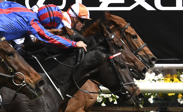 Jockey Craig Williams (R) onboard Vow and Declare wins the Melbourne Cup horse race in Melbourne on November 5, 2019. (Photo by William West/AFP Photo)