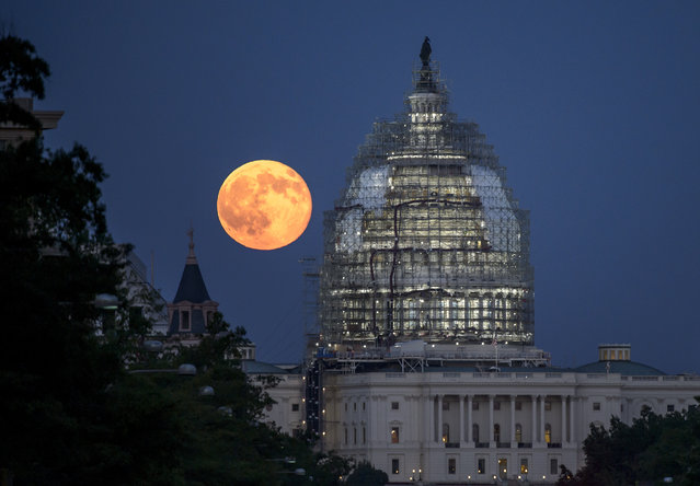 In this handout provided by the National Aeronautics and Space Administration (NASA), a second full moon for the month of July rises behind the dome of the U.S. Capitol on July 31, 2015 in Washington, DC. In recent years, people have been using the name Blue Moon for the second of two full moons in a single calendar month. An older definition of Blue Moon is that it is the third of four full moons in a single season. (Photo by Bill Ingalls/NASA via Getty Images)