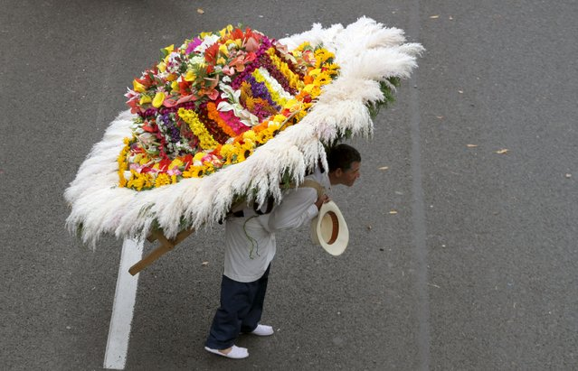"A man wearing a floral arrangement on his back takes part in the annual flower parade, in which flower growers known as ""silleteros"" present their floral arrangements, in Medellin, Colombia, August 9, 2015. (Photo by Fredy Builes/Reuters)"