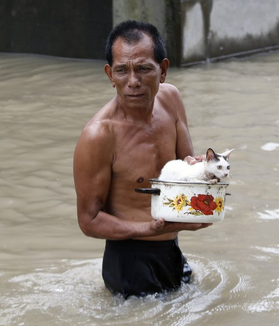"A man wades through flood waters with his cat on a cooking pot in Hermosa, Bataan, northwest of Manila August 5, 2014. Typhoon Halong, locally named ""Jose,"" has intensified monsoon rains resulting in flooding in several parts of northern Philippines, local media reports said. (Photo by Erik De Castro/Reuters)"