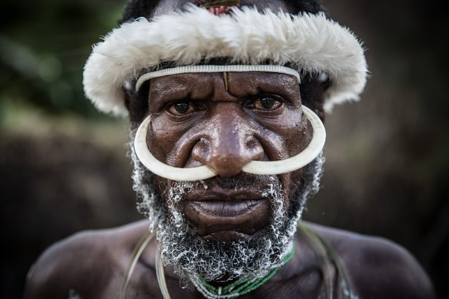 A Papuanese tribal man poses for a portrait during the 25th Baliem Valley festival on August 7, 2014 in Wamena, Indonesia. (Photo by Agung Parameswara/Getty Images)