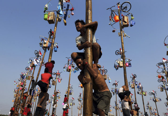 """Participants react as they hold on to a greased pole during the """"Panjat Pinang"""" event organised in celebration of Indonesia's 69th Independence Day at Ancol Dreamland Park in Jakarta August 17, 2014. The annual event sees participants working together to reach the top of slippery poles where prizes are hung. (Photo by Reuters/Beawiharta)"""