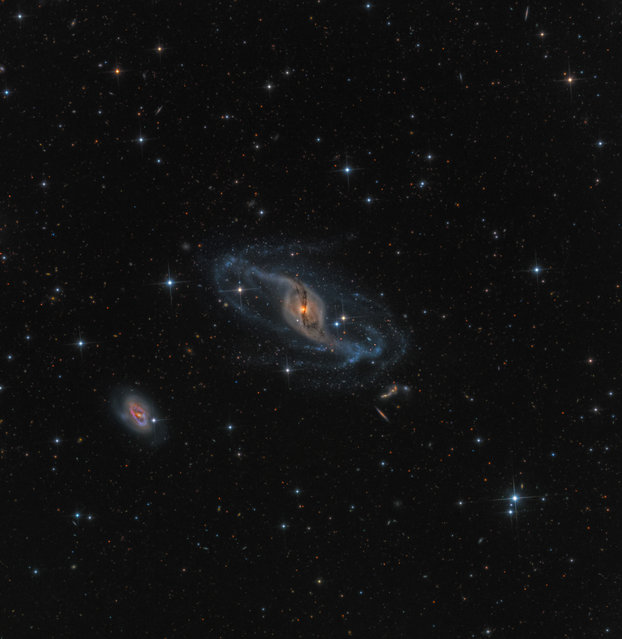 """NGC 3718"". Taken from Ranch Hidalgo in Animas New Mexico, NGC 3718 is found in the constellation of Uras Major and know as a peculiar barred spiral galaxy. Gravitational interactions with its near neighbour NGC 3729 (the spiral galaxy below and to the left) are likely reason for the galaxy's warped spiral arms, whilst a dark dust streak wraps around the centre. Winner of the Robotic Scope category. (Photo by  Mark Hanson, USA/The Astronomy Photographer of the Year 2014 Contest)"