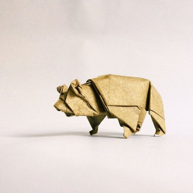 Origami By Ross Symons
