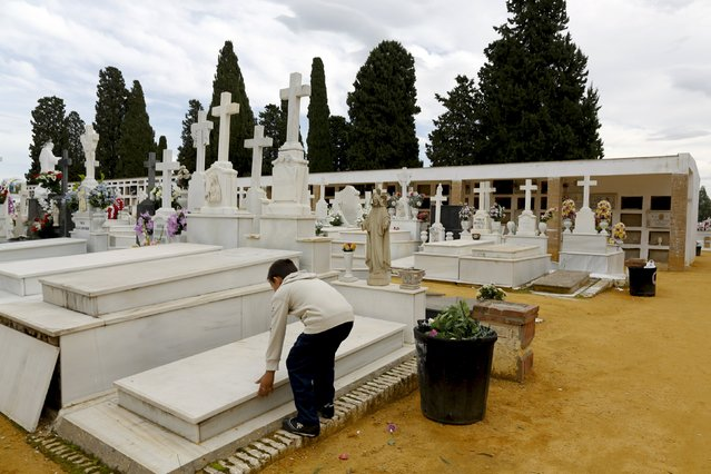 A boy plays with a tomb during All Saints Day at the cemetery of San Fernando in the Andalusian capital of Seville, November 1, 2015. (Photo by Marcelo del Pozo/Reuters)