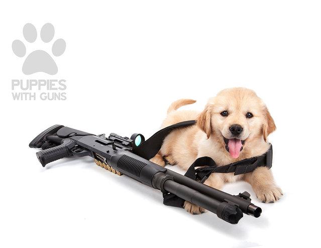Puppies with guns calendar 2015. (Photo by Ben Haulenbeek)