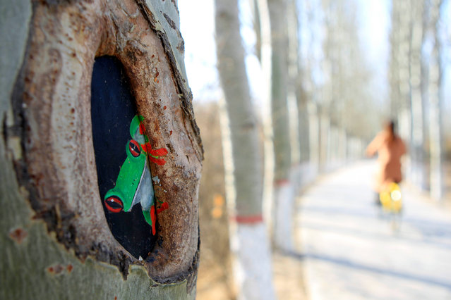 A drawing painted on a tree at Phoenix Park, in northwest China's Ningxia Hui autonomous region, Yinchuan City, China on March 10, 2018. (Photo by  Xinhua/Barcroft Media)