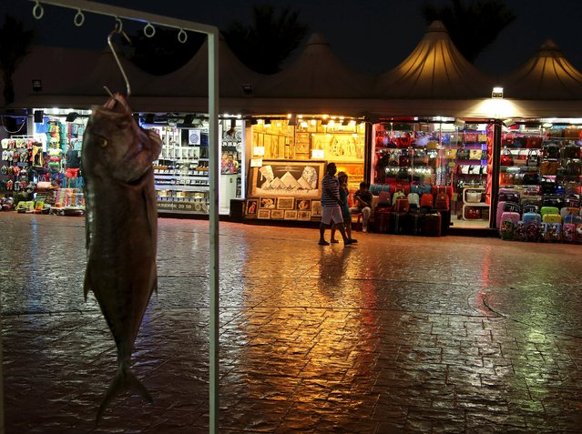 Tourists walk past shops as a fish hangs outside a restaurant in the Red Sea resort of Sharm el-Sheikh, Egypt, November 11, 2015. Egypt's President declared on Wednesday that the 'lights will not be going out in Sharm al-Sheikh', as he visited the Red Sea resort hit by suspension of foreign flights since a Russian airliner crash some experts suspect was caused by a bomb. (Photo by Asmaa Waguih/Reuters)