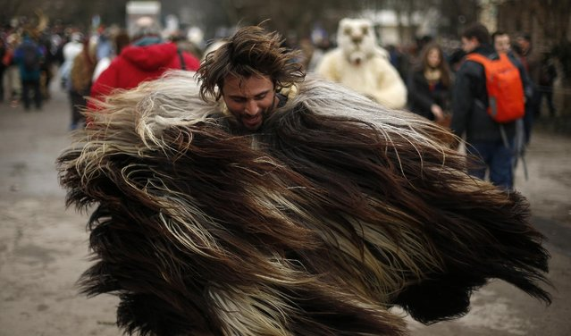 "A man dressed in a costume made of animal fur, known as ""kuker"", dances during the International Festival of the Masquerade Games in the town of Pernik January 31, 2015. (Photo by Stoyan Nenov/Reuters)"