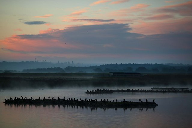 The sun rises ahead of the incoming tide at RSPB's Snettisham Nature reserve. (Photo by Dan Kitwood/Getty Images via The Palm Beach Post)